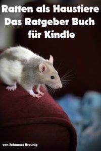 Ratten als Haustiere